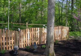 Conved Cedar with Split rail