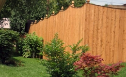 Cedar Privacy with Cap